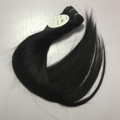 Raw indian hair 2pcs+closure
